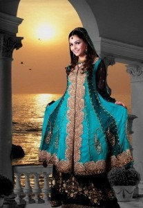 Beautiful Wearing 207x300 Pakistani Party Wear / Dress