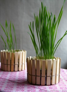 13 Peg Plant Pot 219x300 35 Home DIY Projects That Won't Fail To Inspire You