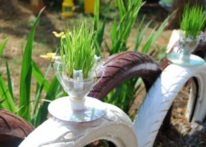 DIY Flower Pots using CDs and Plastic Bottles 300x214 DIY Ideas   Plastic Bottle Plantation