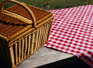 Make a Picnic Plan